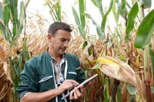 Tools Make Seed Selection More Strategic